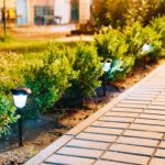 Night View Of Flowerbed With Violas Illuminated By Energy-Saving Solar Powered Lanterns Along The Path Causeway On Courtyard Going To The House